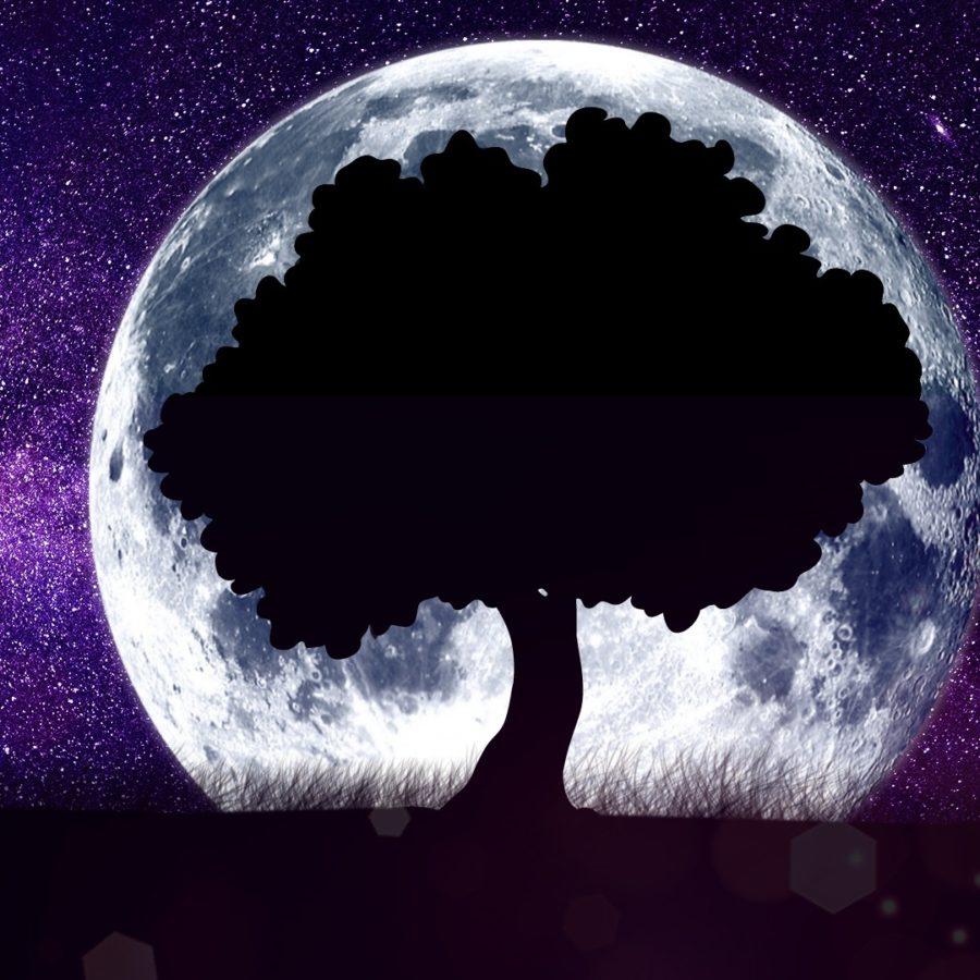 shamanic astrology reading
